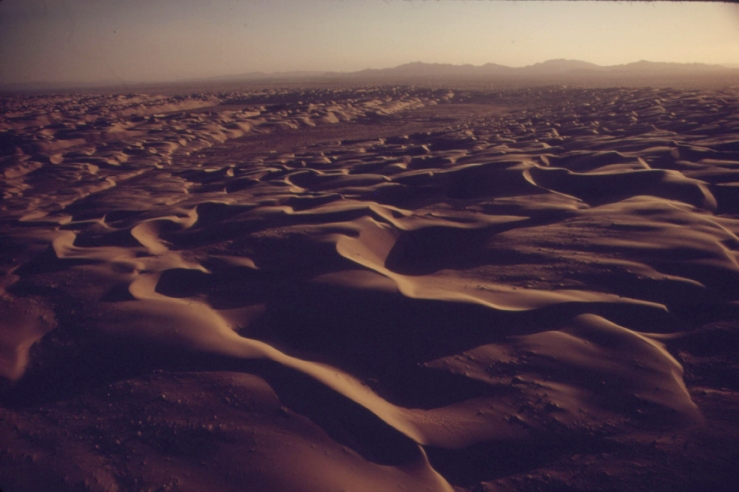 american-dunes