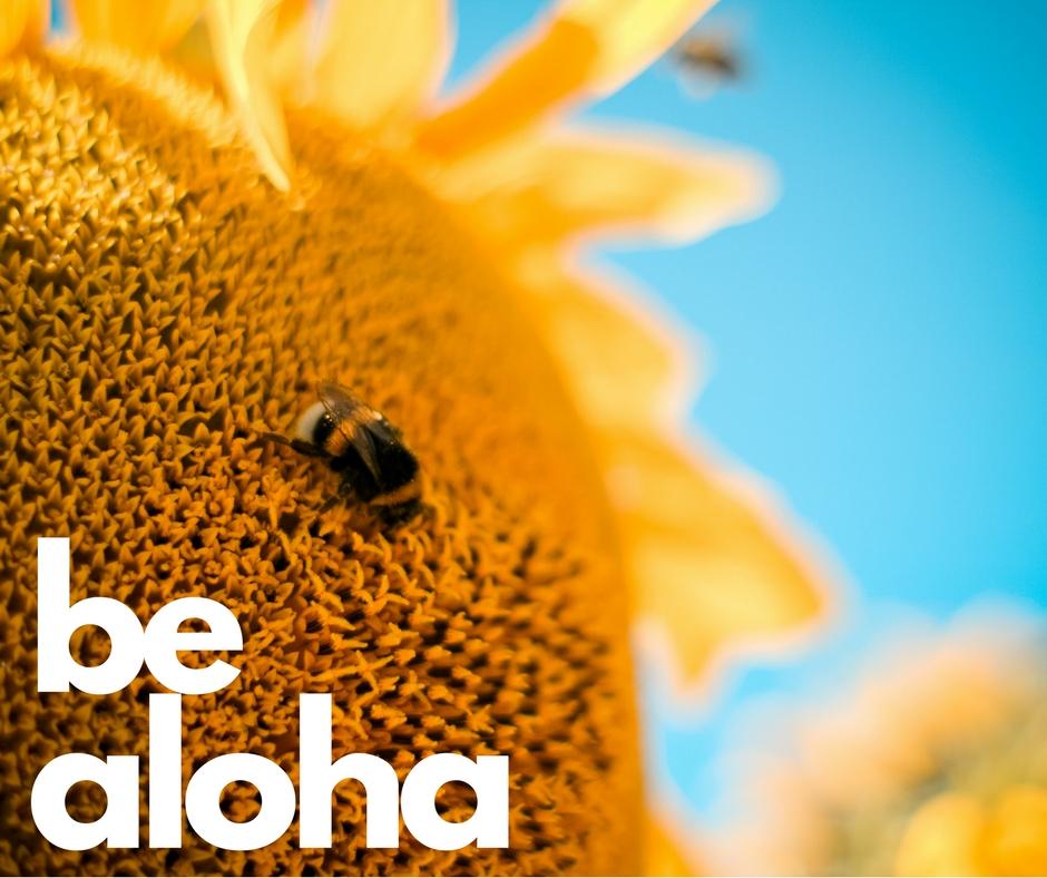 We are Aloha